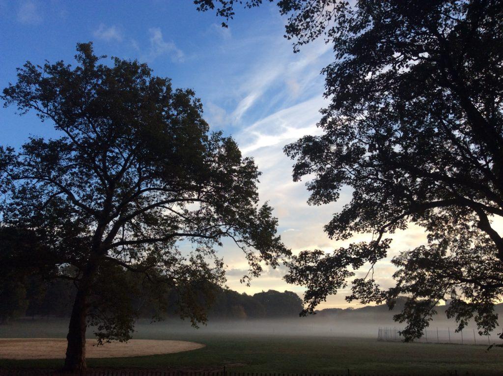 Prospect Park of an October morning.